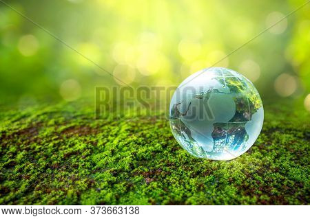 Glass Globe Concept Day Earth Save The World Save Environment The World Is In The Grass Of The Green