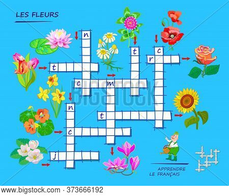 Learn French. Crossword Puzzle Game With Flowers. Educational Page For Children To Study French Lang