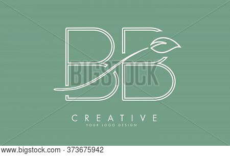 Leaf Cut Bb B Letters And Green Background For Business. Eco Letter Vector Illustration.