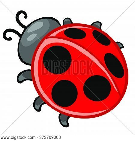 Ladybug Red With Black Dots, Cartoon Illustration, Isolated Object On A White Background, Vector Ill