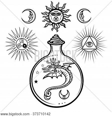Set Of Alchemical Symbols. Origin Of Life. Mystical Snakes In A Flask. Religion, Mysticism, Occultis