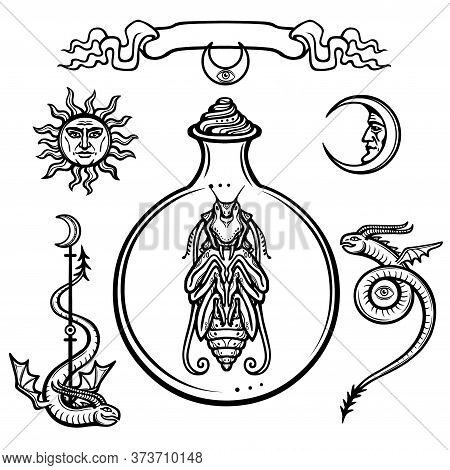 Set Of Alchemical Symbols. Origin Of Life. Mystical Entity In A Test Tube. Religion, Mysticism, Occu