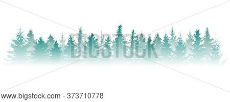 Silhouette Of Fog Forest, Panorama. Isolated Christmas Tree (fir) In Misty Forest On White Backgroun