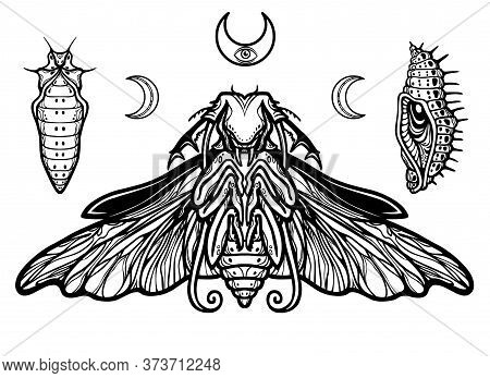 Fantastic Larva Of An Insect. The Vector Illustration Isolated On A White Background. Print, Posters