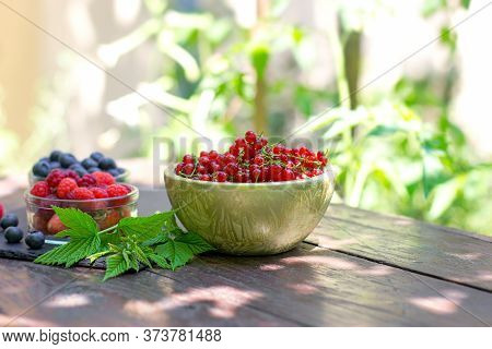 Organic Currant, Red Currant In Bowl On Rustic Table Outdoor