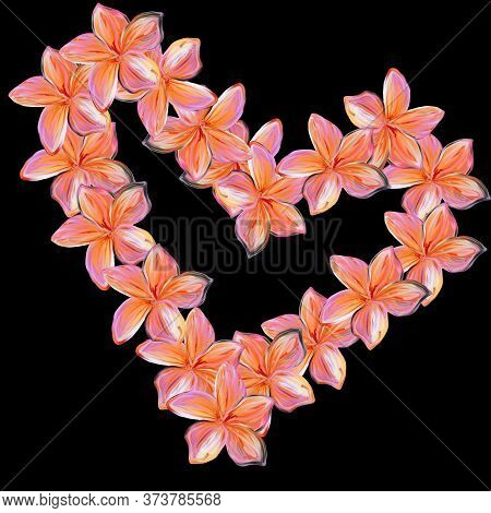 Pink With Yellow Frangipani Plumeria Flowers In Shape Of Heart On Black Background.valentine Card. M