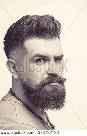 Portrait Of Attractive Severe Brutal Bearded Man Has A Perfect Hairstyle