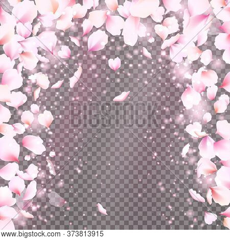 Rose Petals Frame With Falling Tender Pink Petals. Cute Falling Flowers Petals Arc. Vector Illustrat
