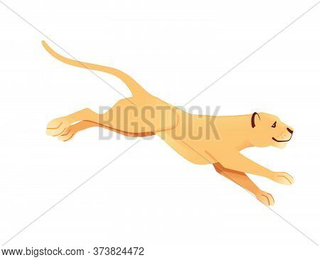 Adult Lioness Jumping African Wild Predatory Cat Female Lion Cartoon Cute Animal Design Flat Vector