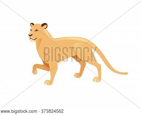 Adult Lioness African Wild Predatory Cat Female Lion Cartoon Cute Animal Design Flat Vector Illustra