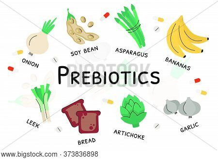 Prebiotic Products, Sources Of These Bacteria, Nutrient Rich Food. Flat Vector Illustration Of Soy B