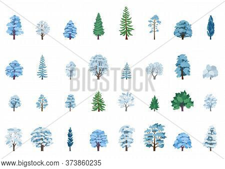 The Collection Of Winter Trees Isolated On White