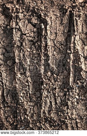 The Background Texture Of The Earth. Dry Parched Earth With A Crack
