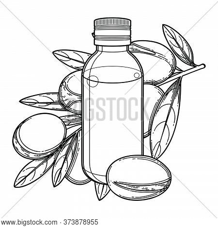 Graphic Oil Bottle Surrounded By Argan Plants.