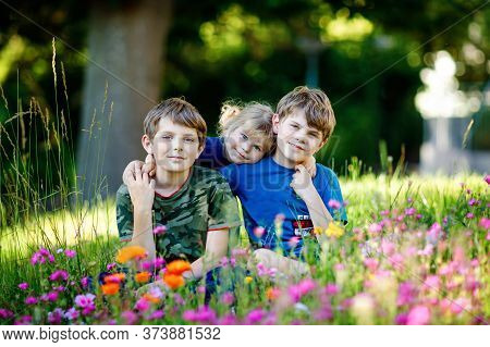 Portrait Of Three Siblings Children. Two Kids Brothers Boys And Little Cute Toddler Sister Girl Havi