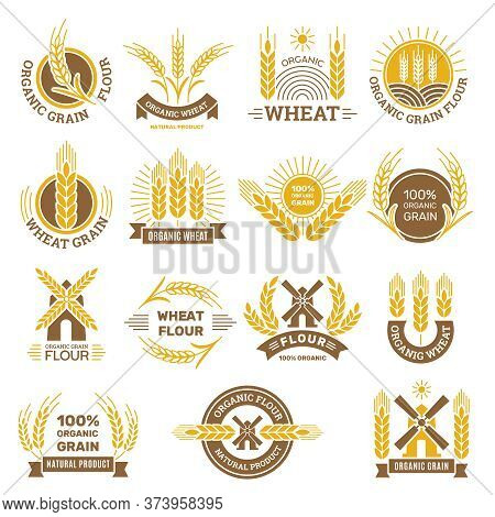 Wheat Grain Logo. Flour Farm Food For Breakfast Shop Harvesting Wheat Traditional Products Vector Ba