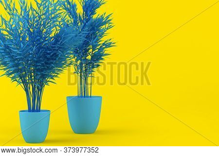 Layout Of Blue Tinted Palm Tree In Blue Pot On Yellow Background. Creative Background With Palm Tree