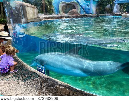 Orlando, Fl/usa - 6/19/20:  A Mother And Daughter Interacting With A Dolphin At The Dolphin Nursery