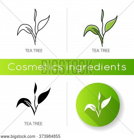 Tea Tree Icon. Skincare Product Component. Organic Beauty. Herbal Moisture. Essential Oil. Natural C