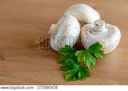Fresh Champignon Mushrooms On Wooden Table, Closeup. Organic Champignons With Parsley Herb Top View.