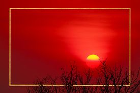Border Gold Sunset Back On Silhouette Dry Tree Dark Red Cloud On The Sky