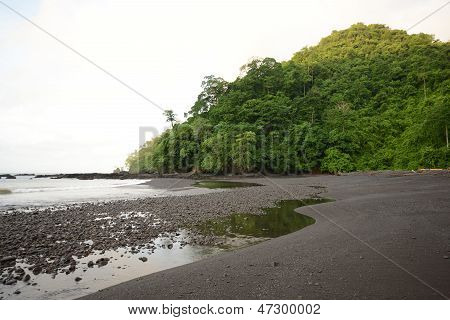 Landscape Of Ocean With Lush Tropical Greenery