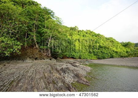 Tropical Nature In Panama With Trees And Ocean