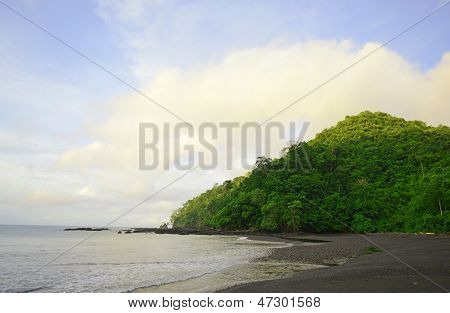 Hill With Trees And Ocean Landscape