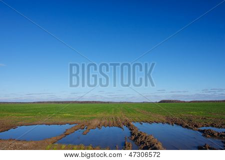Landscape With A Flooded Fields