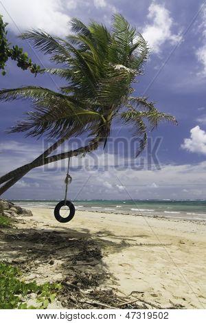 Tropical Beach Tire Swing