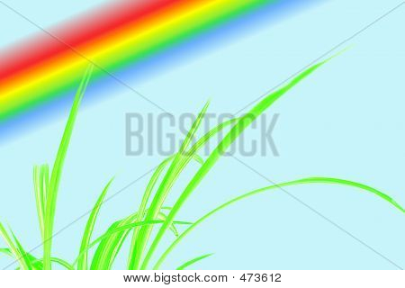 Green Grass With Little Rainbow