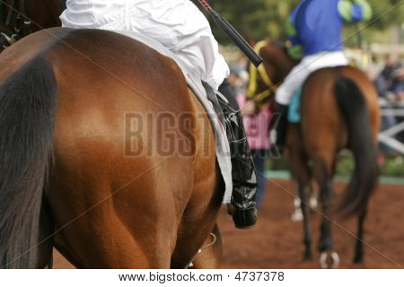 Close Up Detail Of Jockey On Race Horse