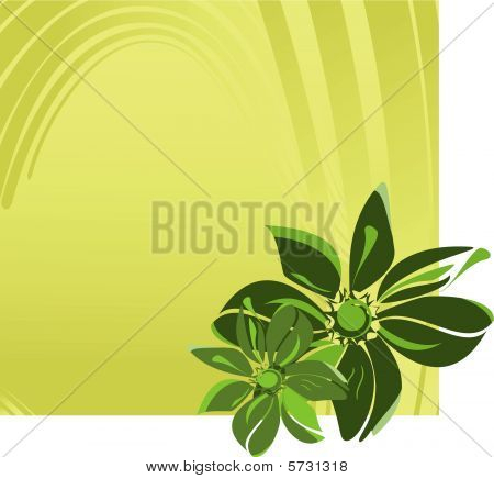 Banner with flowers. Vector illustration
