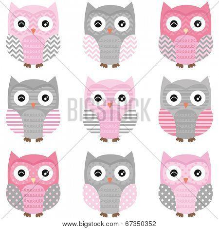 Cute Owl vector set - Illustration