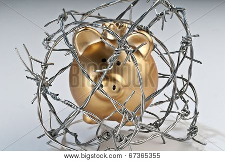 Golden Piggy Bank Behind Barbed Wire