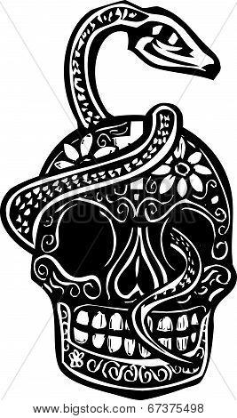 Snake And Skull