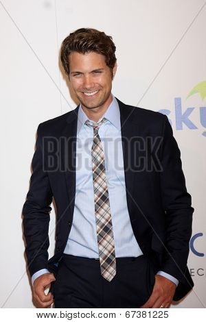 LOS ANGELES - JUN 24:  Drew Seeley at the 5th Annual Thirst Gala at the Beverly Hilton Hotel on June 24, 2014 in Beverly Hills, CA