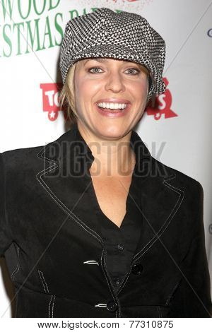 LOS ANGELES - NOV 30:  Arianne Zucker at the 2014 Hollywood Christmas Parade at the Hollywood Boulevard on November 30, 2014 in Los Angeles, CA