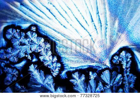 Micro Photo of Micro Crystals in polarized Light poster