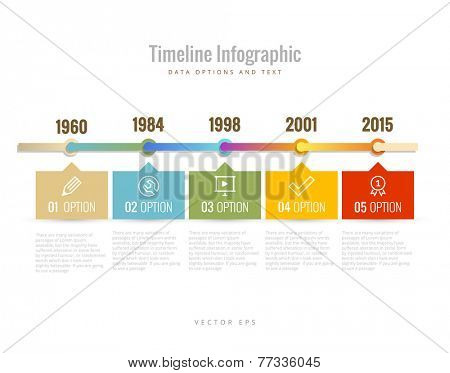 Timeline Infographic with diagrams, data options and text poster