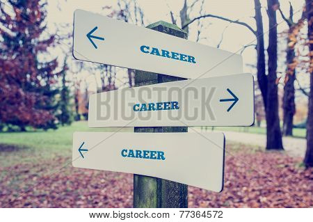 Rural signboard with the word Career with arrows pointing in three directions conceptual of there being many choices different career and diversity. poster