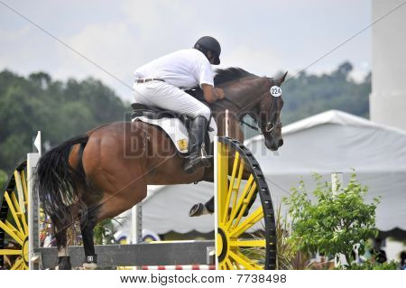 Equestrian Show Jumping