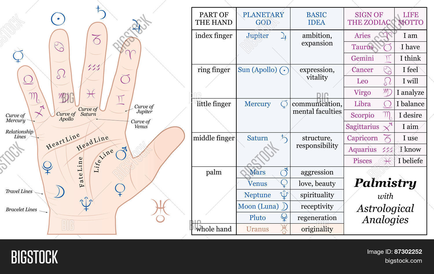 Palmistry Astrology Vector Photo Free Trial Bigstock
