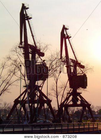 Old Cranes