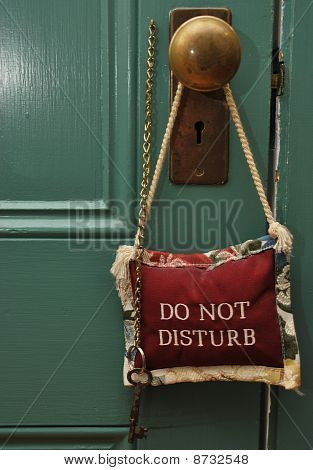 Lovely Decorative Pillow Do Not Disturb Sign