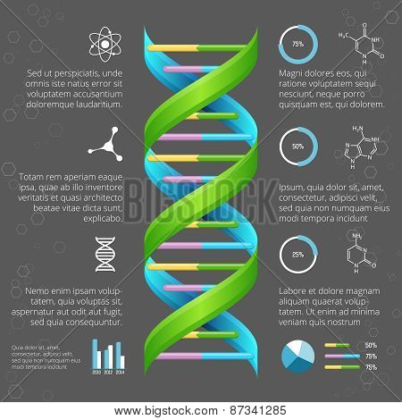 Infographic template with DNA structure for medical and biological research