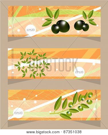 Set, collection of three orange, modern banners with pattern and olives and olives twig