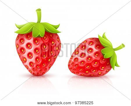 Strawberry red ripe fruits isolated. Eps10 vector illustration. Isolated on white background