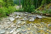 Majestic mountain river in Canada. Manning Park Lightning Lake Trail in British Columbia. poster
