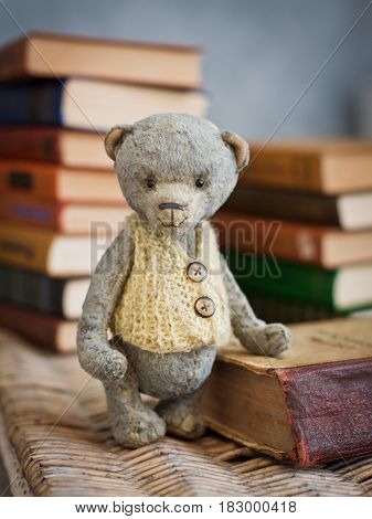 Teddy bear sits on a vintage book in the library